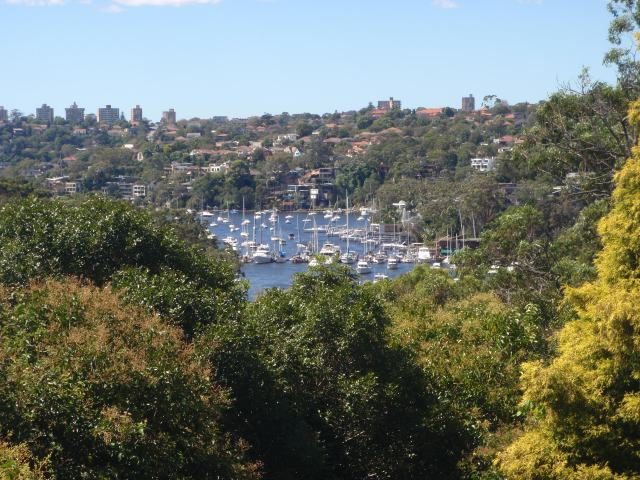 View of Cammeray Marina