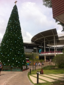 Local shopping complex Central Festival already has the Christmas tree up!!