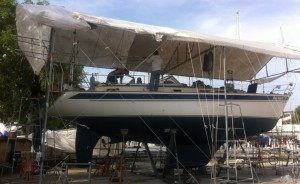 Blue Heeler antifoul applied; bimini work underway