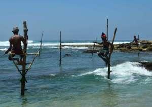 Stick fishermen
