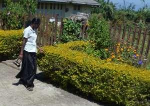 lady walking by