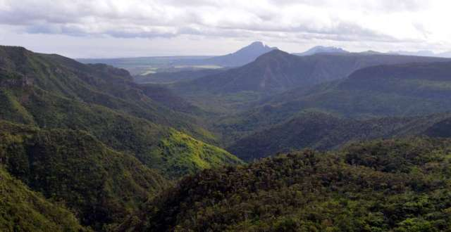View from the top of the Black River Gorge National Park