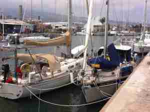 Le Port - Blue Heeler kept company with Coruisk