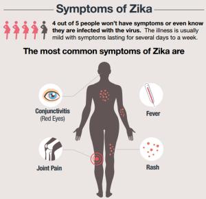 zika_1