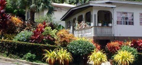 Prettiest garden in Charlotteville?