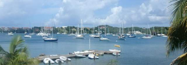 Prickly Bay - up to 200 vessels during the season