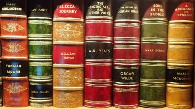 Ireland famous authors
