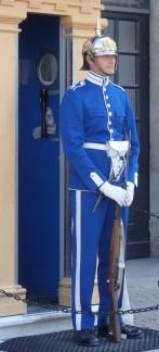 Swedish Guard
