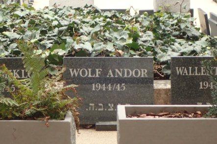 Memorial Garden to the Jews murdered in Budapest
