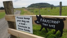 Farm Shop, Kerrera Is