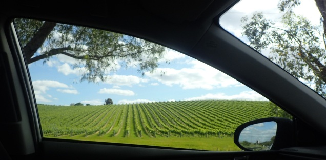 Yarra Glen wineries