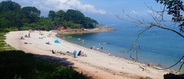 Elberry Beach, Tor-Bay