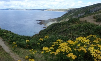 Whitsand Bay near Plymouth Harbour